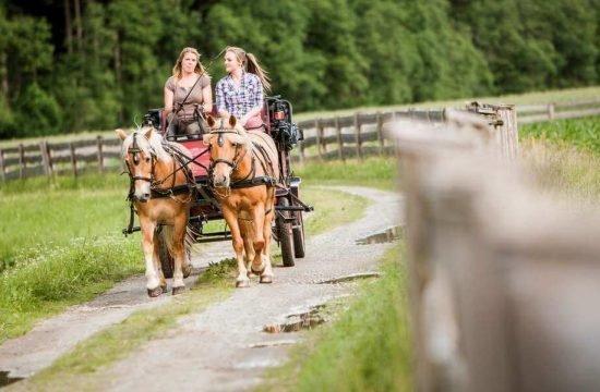 Summer holiday Ahrn Valley