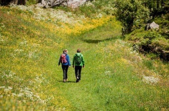 Walking in Ahrn valley